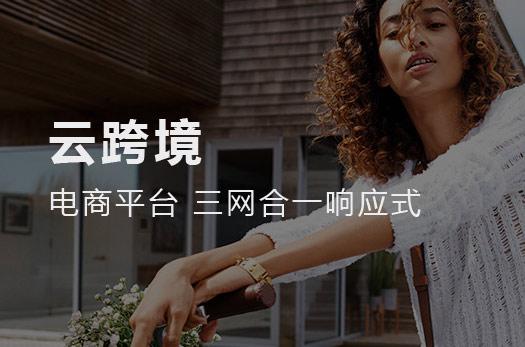厦门云跨境电商平台网站设计