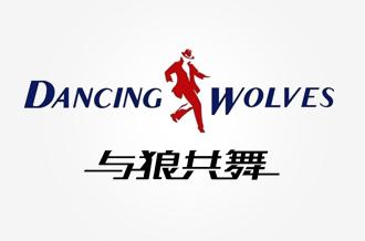 与狼共舞官方品牌网站建设